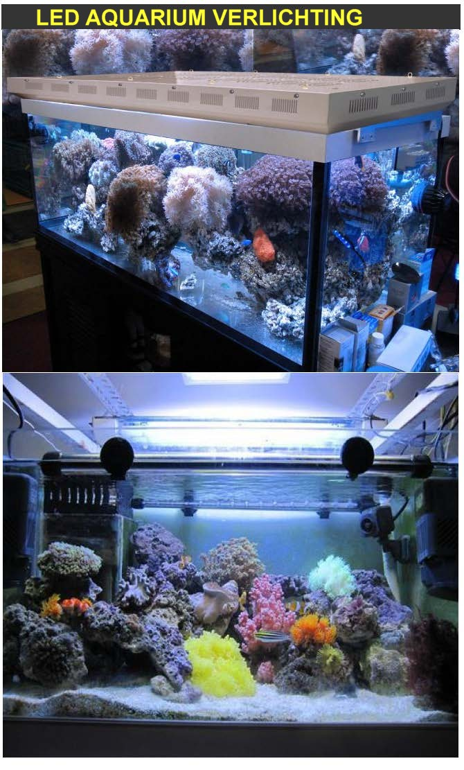 http://www.hacestra.nl/images/LED-Aquarium-Light-Melody-Lighting-_Pagina_1.jpg